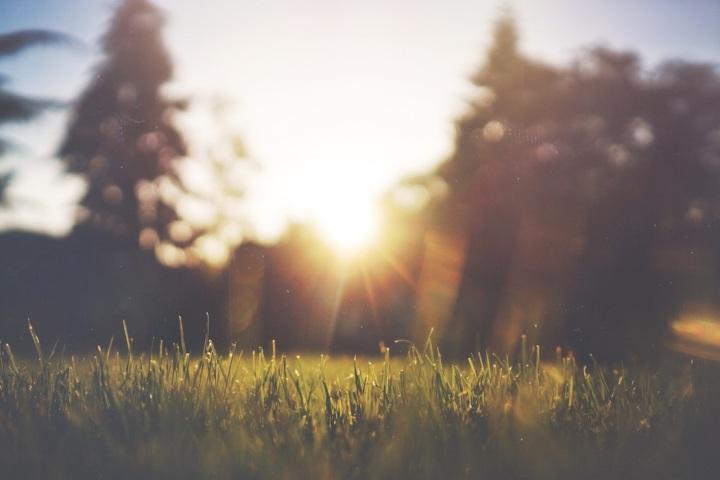 sun blur