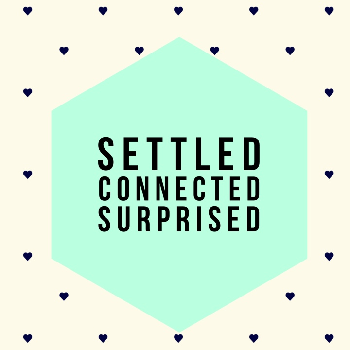 settled connected surprised